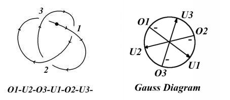 The Trefoil and its Gauss Diagram